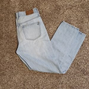 Madewell Perfect Summer Jean in Fitzgerald